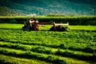 Αγρότες : Διαδικασία υπολογισμού εισφορών και συντάξεων