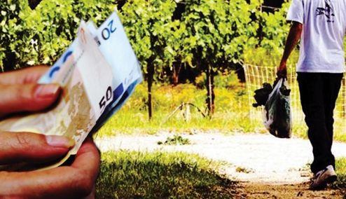 Picture 0 for Έξτρα εισφορές σε ετεροεπαγγελματίες με αγροτικό εισόδημα φέρνουν οι εγκύκλιοι